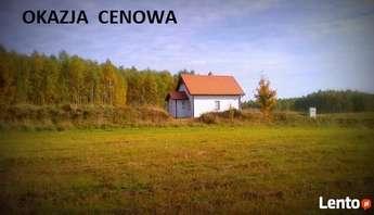 Dźwierzuty: dom całoroczny z lasem koło Szczytna