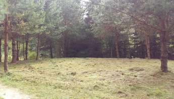Szczytno: Działka na Mazurach, świetna lokalizacja, Romany