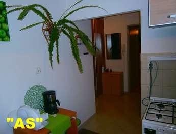 Olsztyn: Zamienię mieszkanie 39 m2 - OLSZTYN