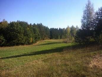 Stare Juchy: Mazury Stare Juchy grunty z WZ. Połozone nad jeziorem Garbas przy lesie